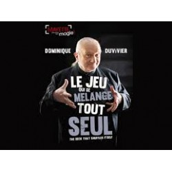 JEU QUI SE MELANGE TOUT SEUL Dominique Duvivier