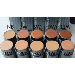 PAINT STICK KRYOLAN TV 25 Ml