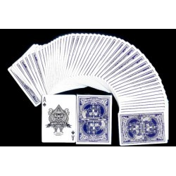 CARTES MAGIC CASTLE NOUVEAU MODELE