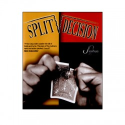 SPLIT DECISION JOSHUA JAY RECHARGE