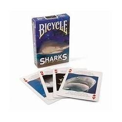 BICYCYLE SHARKS