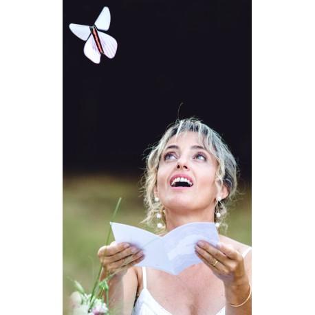 papillon magique magic flyer