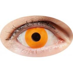 LENTILLES yeux blancs